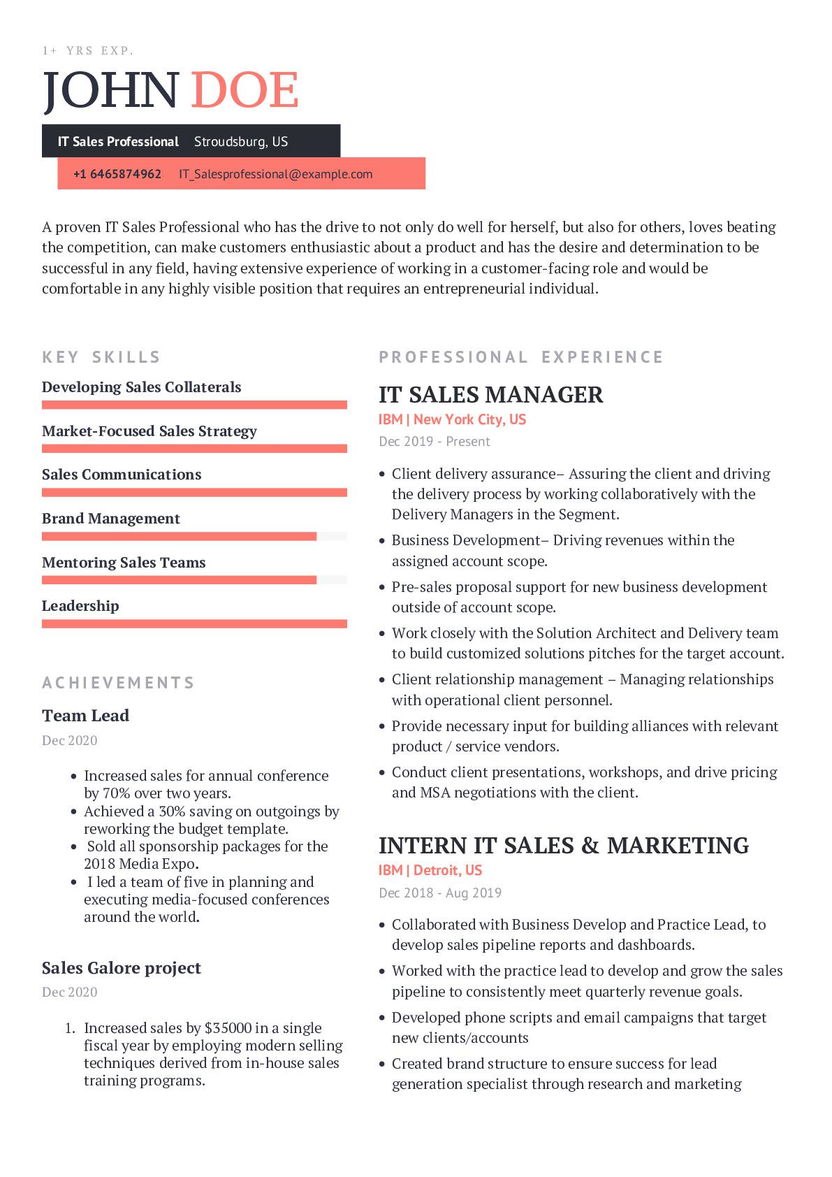 IT Sales Professional Resume Example